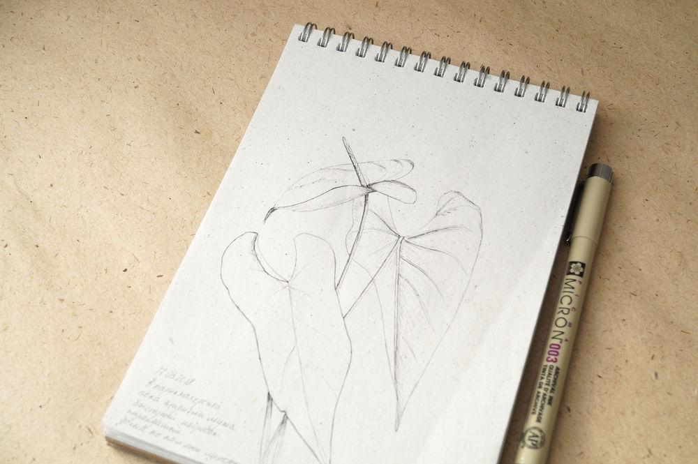 рисую каждый день, рисунок ручной работы