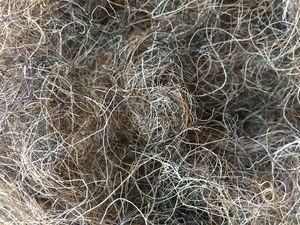 Конский волос для набивки. Ярмарка Мастеров - ручная работа, handmade.