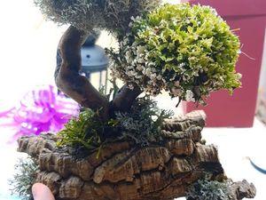 Декоративное дерево для интерьера. Ярмарка Мастеров - ручная работа, handmade.