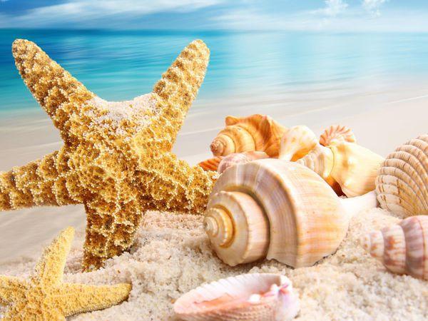 Уезжаю в отпуск!!! | Ярмарка Мастеров - ручная работа, handmade