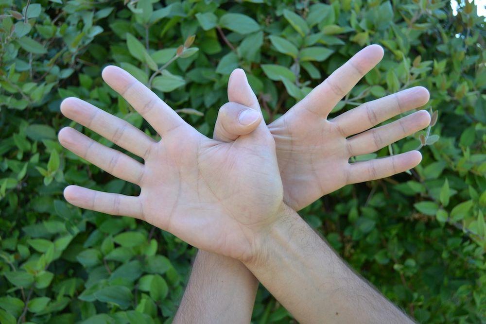 гаруда мудра, мудры, йога для рук