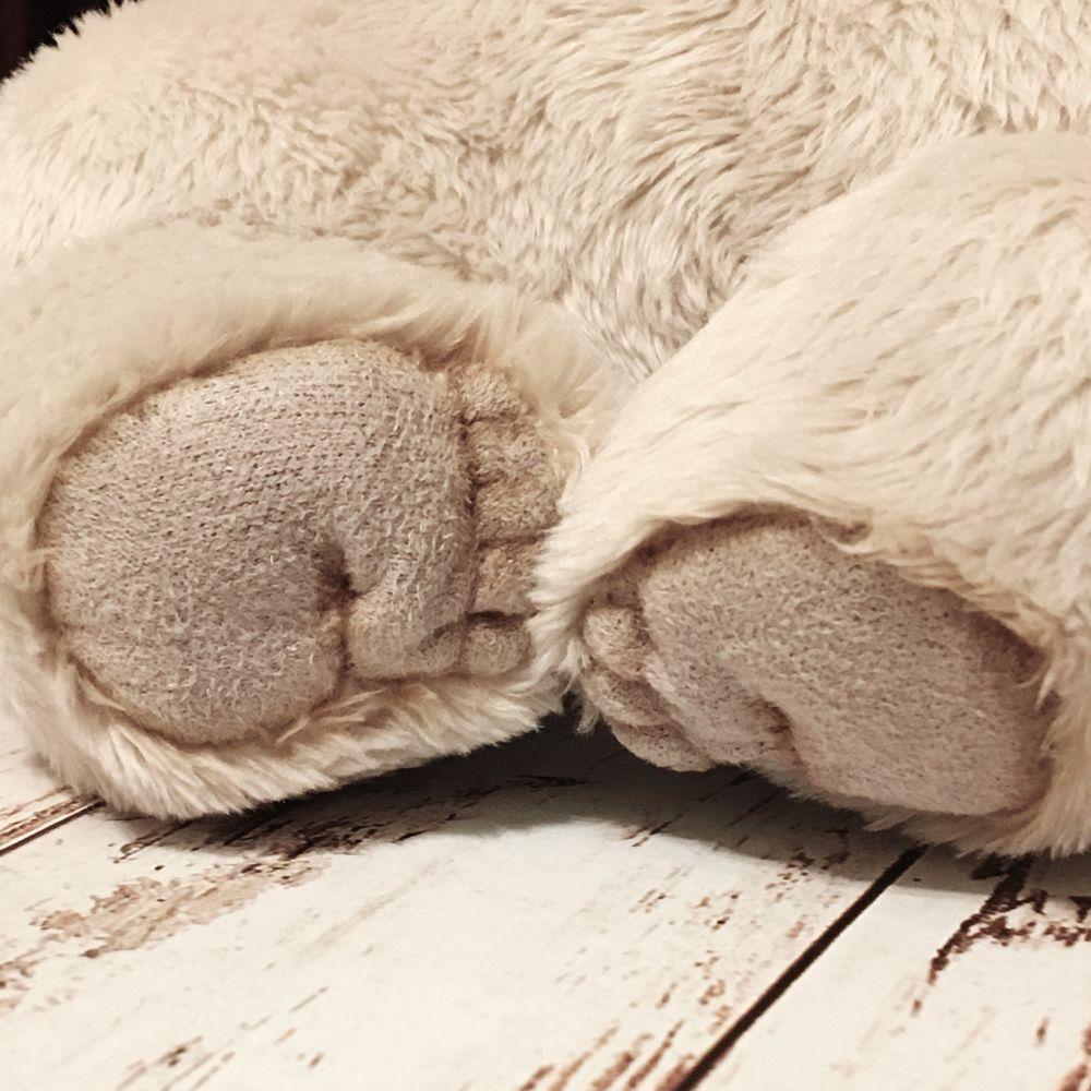 мишка сплюшкин