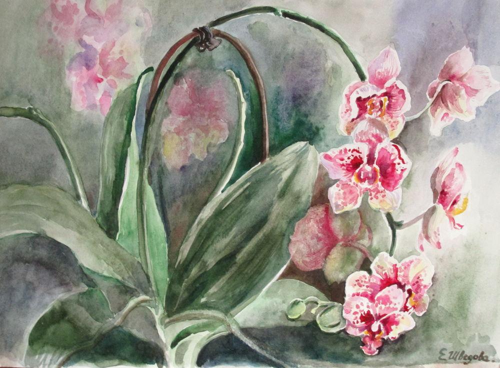 скидка 20%, авторская работа, орхидеи, картина акварелью