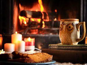 Приглашаю на чаепитие у камина - аукцион с нуля !!!. Ярмарка Мастеров - ручная работа, handmade.