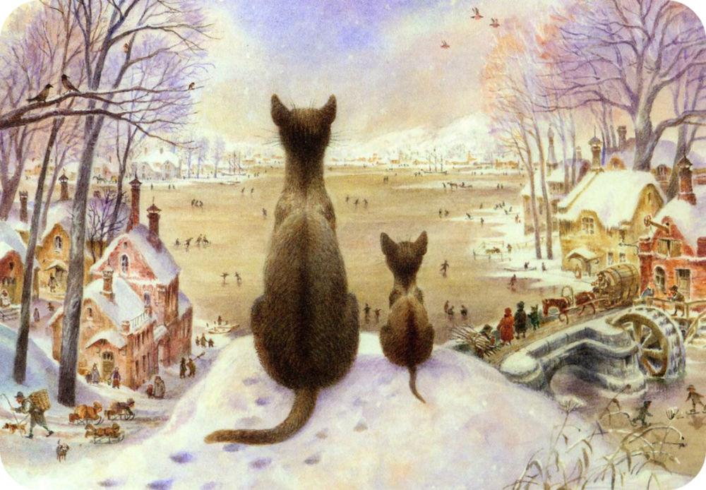 котенок, питерские коты, котята в королёве