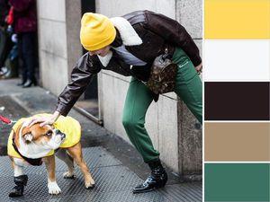 Модные цветовые сочетания сезона осень-зима 2016-2017. Ярмарка Мастеров - ручная работа, handmade.