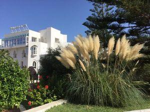 Тунис, отдых!!!. Ярмарка Мастеров - ручная работа, handmade.