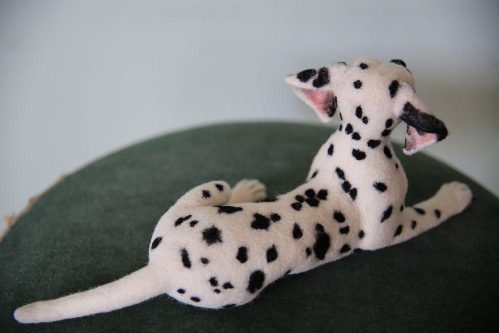 далматинец, валяная собака
