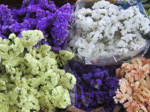 Новинка магазина - сухоцвет статица - разного цвета! | Ярмарка Мастеров - ручная работа, handmade