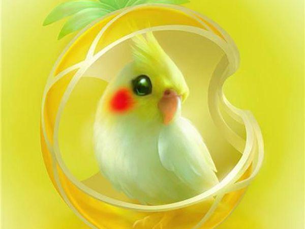 iCandy — волшебные зверята в работах Shu Mizoguchi | Ярмарка Мастеров - ручная работа, handmade