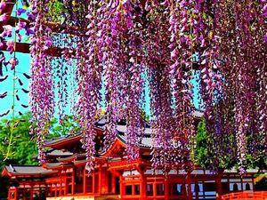 Восхитительные майские праздники в Японии. Ярмарка Мастеров - ручная работа, handmade.