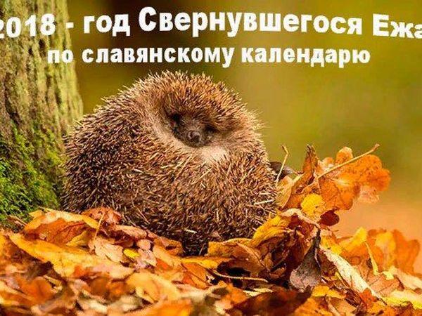 Новый 2018 год — год Свернувшегося Ежа по старославянскому календарю. | Ярмарка Мастеров - ручная работа, handmade