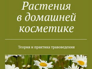 Доступна печатная версия книги. Ярмарка Мастеров - ручная работа, handmade.