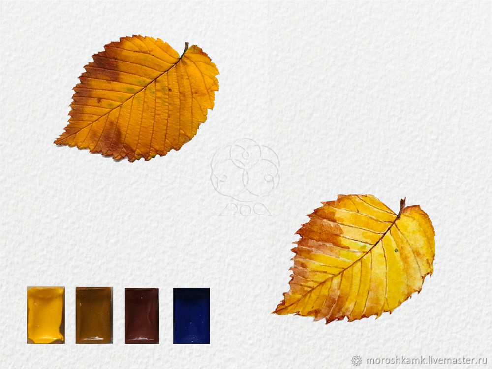 Drawing an Autumn Leaf with Watercolours, фото № 17