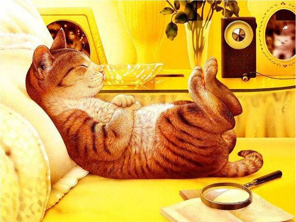 Яркий Котик в Каждый Дом! | Ярмарка Мастеров - ручная работа, handmade