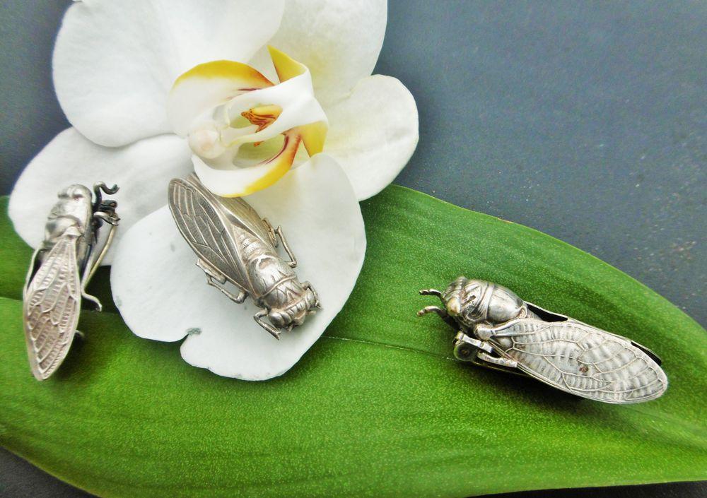 броши насекомые