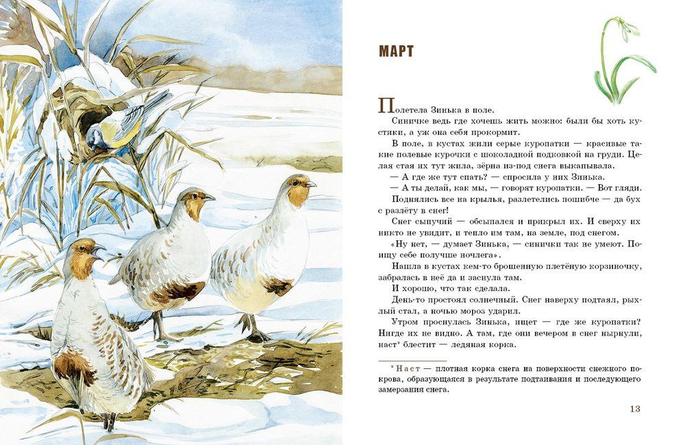 Рисунки к рассказу синичкин календарь бианки