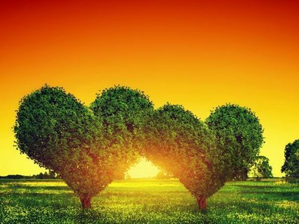 Доброго и солнечного утречка, Друзья!!!!   Ярмарка Мастеров - ручная работа, handmade