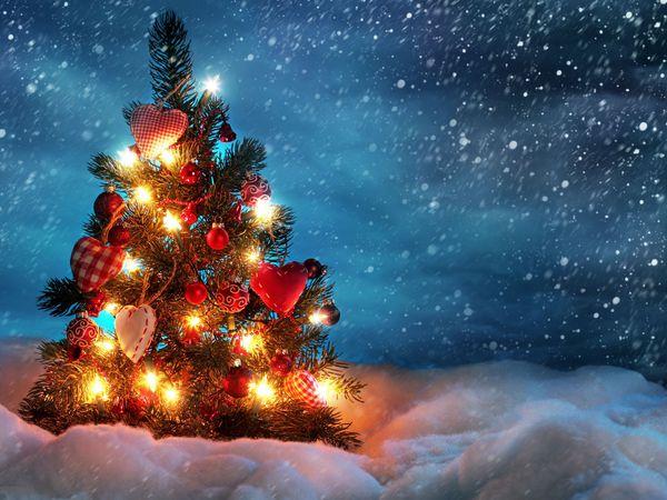 50 необычных ёлок для создания новогоднего настроения | Ярмарка Мастеров - ручная работа, handmade
