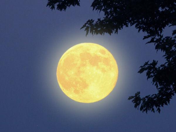 Необычное влияние Луны | Ярмарка Мастеров - ручная работа, handmade