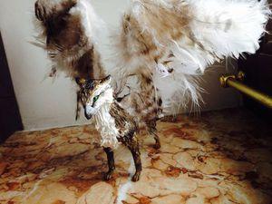 Делаем фигурку грифона своими руками из бархатного пластика. Ярмарка Мастеров - ручная работа, handmade.
