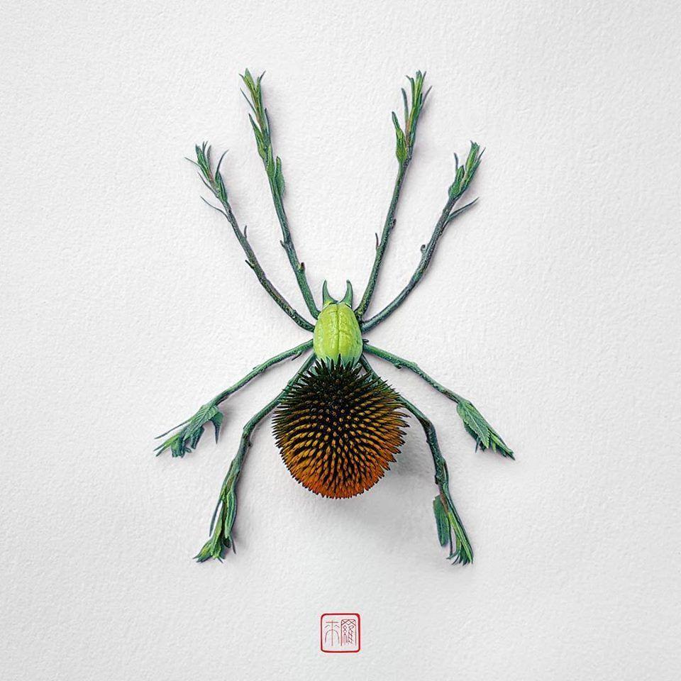 Petal Magic: Unusual Compositions by Raku Inoue, фото № 2