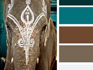 Черпаем вдохновение цветом в мире фауны пустыни. Часть 6. Ярмарка Мастеров - ручная работа, handmade.