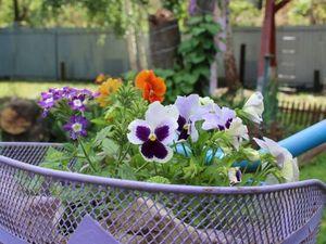 От куда берутся цветы для моих украшений?. Ярмарка Мастеров - ручная работа, handmade.