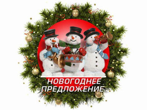Скидки от 10 до 25%  к новогодним праздникам!   Ярмарка Мастеров - ручная работа, handmade