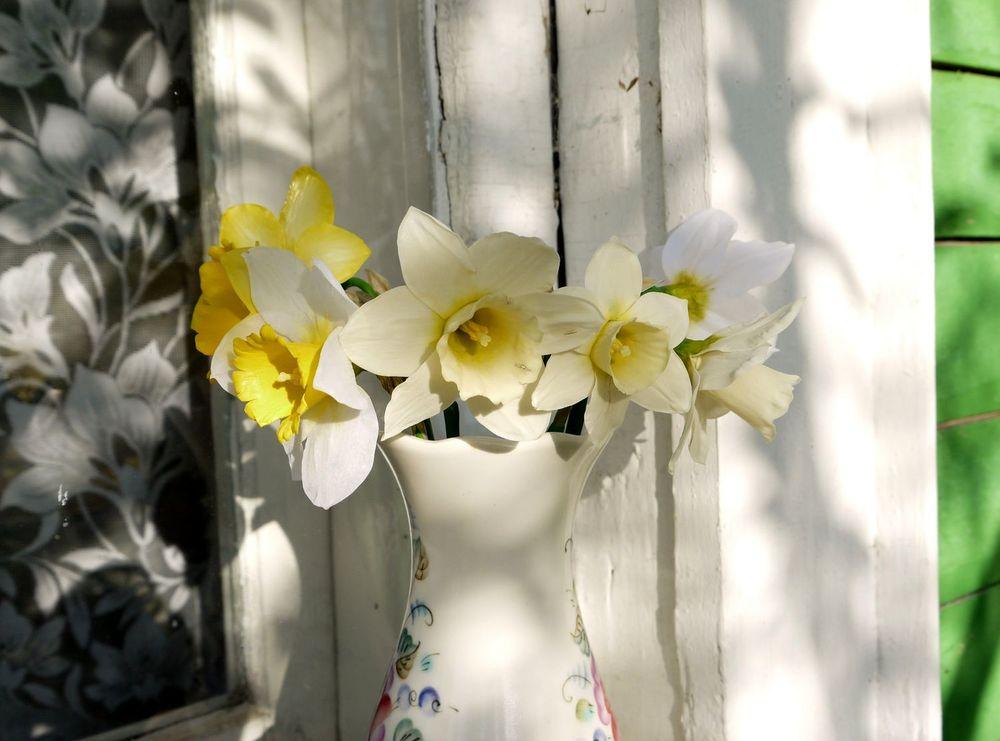 цветы в миниатюре
