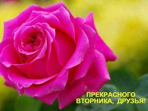Прекрасного Вторника, Друзья!!!. Ярмарка Мастеров - ручная работа, handmade.