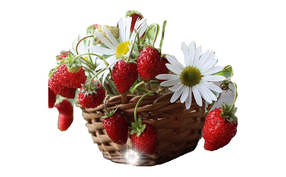 поэтому заговоры, красивые открытки ягодка могу себе