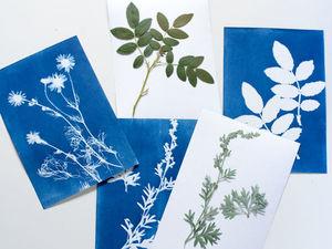 Изучаем растения в нашей местности. Ярмарка Мастеров - ручная работа, handmade.