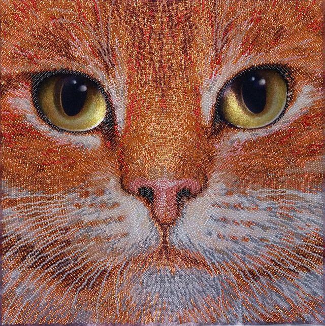 тела артис, вышивка бисером, кот, рыжик, вышитые картины