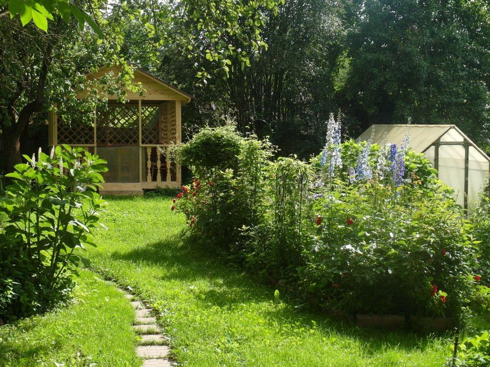 современном сад моей души фото участником, автором