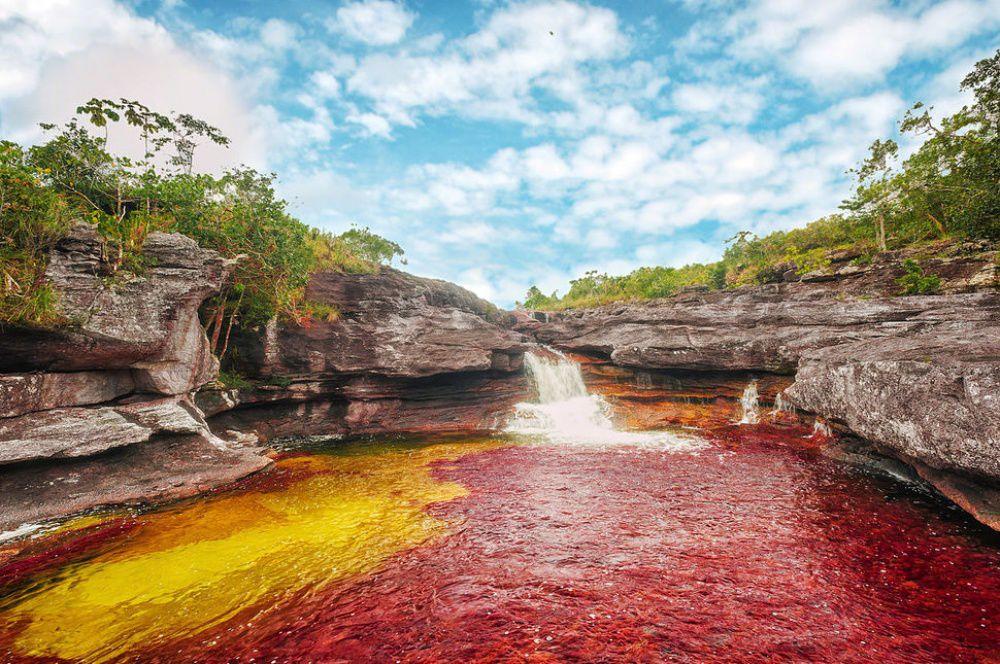 Краски природы: 49 впечатляющих фотографий, фото № 28