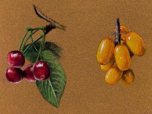 Видео мастер-класс: рисуем ягоды вишни и облепихи пастельными карандашами. Ярмарка Мастеров - ручная работа, handmade.