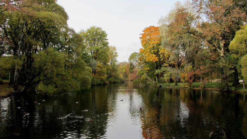осень, осенний, осенние краски, осенний пейзаж, вода, природа, осенняя природа, фотокартина, фотокартины