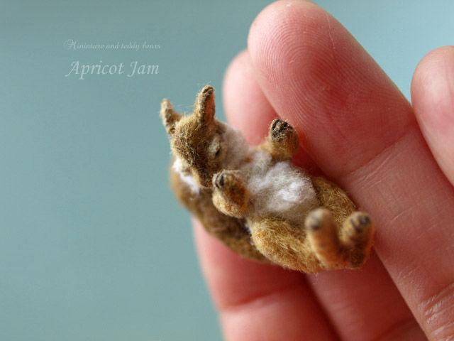 miniature, mini bear