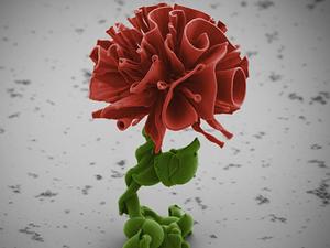 Миниатюрней некуда: как ученый из Гарварда выращивает наноцветы. Ярмарка Мастеров - ручная работа, handmade.