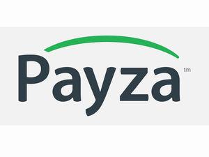 Принимаю оплату через Payza.. Ярмарка Мастеров - ручная работа, handmade.