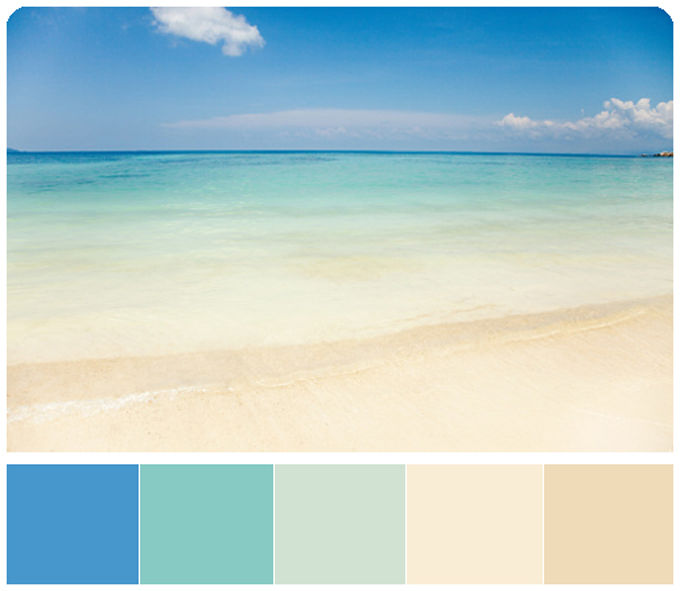 the choice of color
