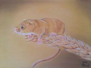 Рисуем пастелью мышку-малютку на колоске | Ярмарка Мастеров - ручная работа, handmade
