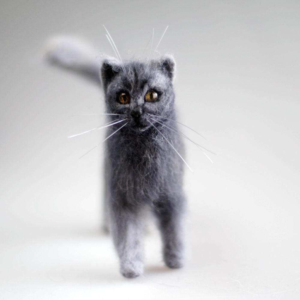 кошка, серая кошка