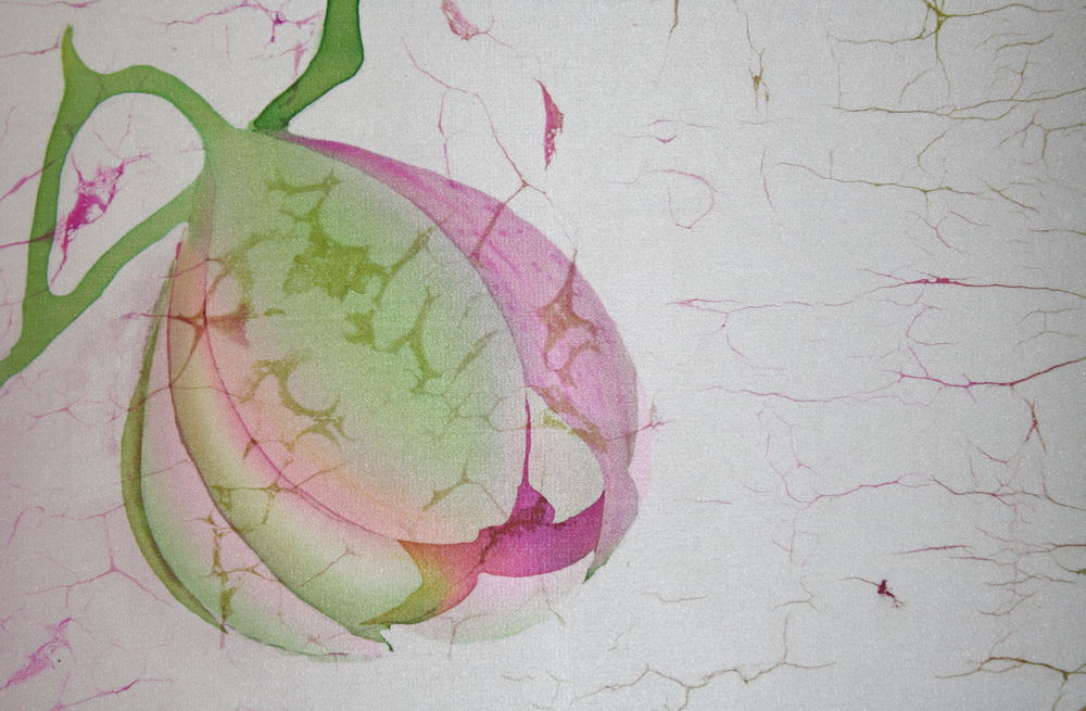 мастер классы, батик в киеве, ручная роспись, мк светланы яковлевой, платок с орхидеей