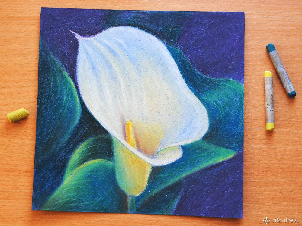 Рисуем пастелью изящный цветок каллы, фото № 14