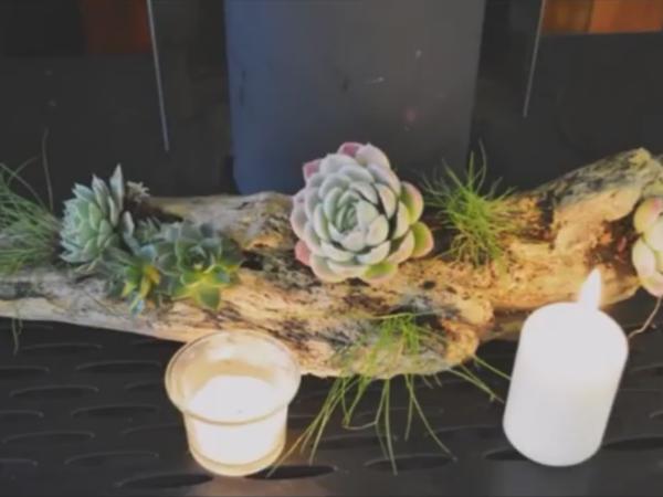 Украшаем свой дом суккулентами | Ярмарка Мастеров - ручная работа, handmade