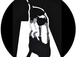 Международная выставка-фестиваль «Портрет кошки» в Санкт-Петербурге. Ярмарка Мастеров - ручная работа, handmade.