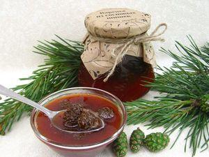 Сосновые дары! Варенье из шишек, полезные свойства. Ярмарка Мастеров - ручная работа, handmade.