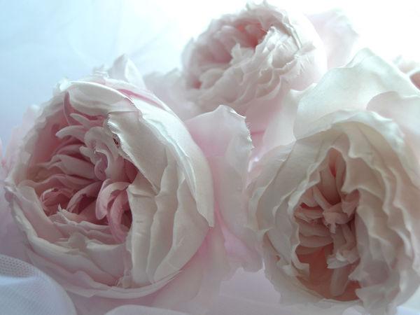 Очарованье роз | Ярмарка Мастеров - ручная работа, handmade